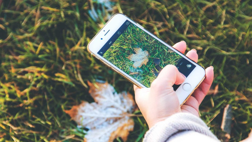 Best-Notched-Smartphones-on-selfgrowth