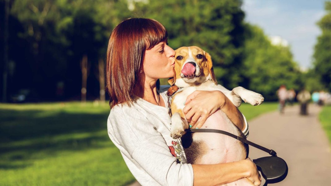 Simply-Best-Ways-to-Make-a-Conscious-Relation-with-Pets-on-selfgrowth